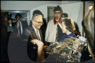 Bundesratswahl 1984