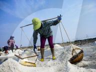 REPORTAGE - Salz-Ernte in Thailand
