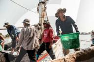 REPORTAGE - Gastarbeiter in Thailand