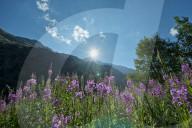 REPORTAGE - Wallis: Val de Bagnes