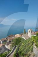 REPORTAGE - Weingebiet Lavaux am Genfersee