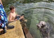 FEATURE - Tierischer Badegast: Zwillingsbrüder Oliver und Thomas schwimmen mit Robbe an der Südküste Englands