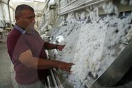 REPORTAGE - Baumwolleproduktion in der Türkei
