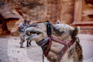 REPORTAGE - Impressionen von den Ruinen von Petra