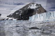 REPORTAGE - Antarktis: Der weisse Kontinent