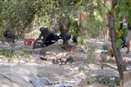 REPORTAGE - Der Drogenwald von Rovoredo: Einer grössten Umschlagplätze für Heroin in Italien