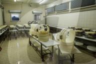 REPORTAGE - Herstellung des bekannten Parmigiano Reggiano bei Bertinelli in Noceto