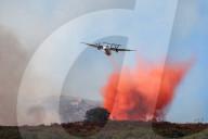 NEWS - Feuerwehr bekämpft Waldbrände auf Korsika