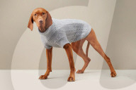 FEATURE - Hundebekleidungs-Marke The Barkers zeigt neue Herbst/Winterkollektion