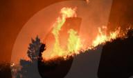 NEWS - Waldbrände in Kalifornien breiten sich weiter aus
