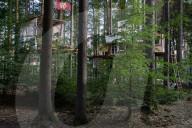 NEWS - Waldbesetzung des Dannenröder Forst gegen den A49-Weiterbau in Deutschland