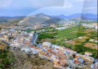 NEWS - Spanien: Mann in Casillas verhaftet bei Unzucht mit Pony