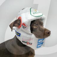FEATURE - Hochmodische Helme für Hunde