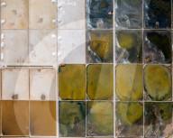 FEATURE - Salzwiesen in Dalmatien sehen wie riesige Schminkpaletten aus