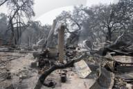 NEWS - USA: Brände wüten weiter im Sonoma-Weingebiet in Kalifornien