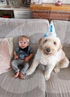 FEATURE - 1-jähriger Sohn Cody kuschelt gern mit Hund Enzo