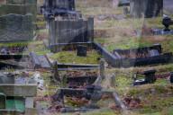 FEATURE - em Übeltäter auf der Spur: Eine Dachs-Sippe hat den Yardley Friedhof von Birmingham verwüstet
