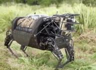 FEATURE - Militärroboter der Zukunft könnten von echtem Muskelgewebe angetrieben werden