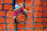 FEATURE - Tausende von Tomaten auf dem Markt in Bogra, Bangladesch