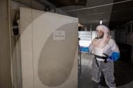NEWS - Coronavirus: Reinigung der COVID-Opfer in Israel