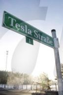 NEWS - An der Teslastrasse: Die Baustelle der Tesla Gigafactory in Grünheide