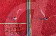 FEATURE - Tausende von roten Kartoffeln werden auf einem Gemüsemarkt gewaschen und sortiert
