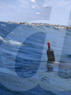 FEATURE - Die Kunst des Kelterns: Argentinisches Weingut Wapisa lässt Wein neun Monate lang im Atlantik reifen