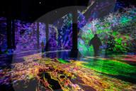 FEATURE - Die Schönheit von Mathematik, Natur und Architektur: Digitale Installation im New Yorker Artechouse