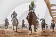 NEWS - Pferderennen in Sharjah, Vereinigte Arabische Emirate