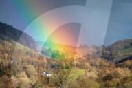 FEATURE - Ein Schaf grast vor einem Regenbogen in Wales