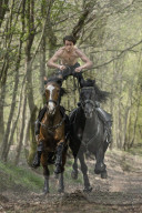 FEATURE - Kunststücke mit Pferden im Galopp