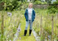 FEATURE - Teures Vergnügen: Der Nine Ladies Dancing Tea aus Fife kostet rund 200 Pfund pro 100 Gramm