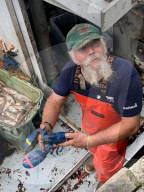 FEATURE - The Dream of the Blue Lobsters: Fischer Toby Burnham hat vor der Küste Massachusetts einen blauen Hummer gefangen und wieder ins Meer entlassen