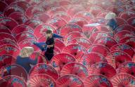 FEATURE - Arbeiterinnen in Thailand verzieren traditionelle Regenschirme mit handgemalten Blumen