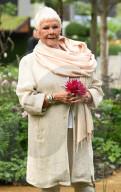 PEOPLE - Judi Dench an der Chelsea Flower Show
